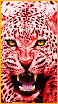 HD Colorful Tiger Wallpapers - Jaguar poster