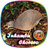 Canto de Lambu icon
