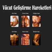 Bodybuilding Exercise icon