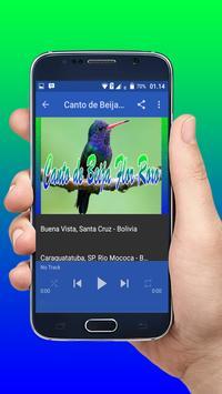 Canto De Beija Flor Roxo apk screenshot