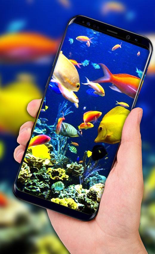 Fish Aquarium Live Wallpaper Hd Background Themes For