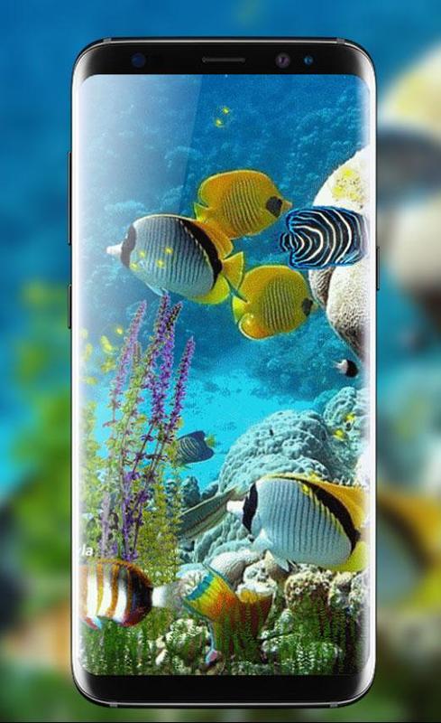 Fish Aquarium Live Wallpaper HD Background Themes Screenshot 7