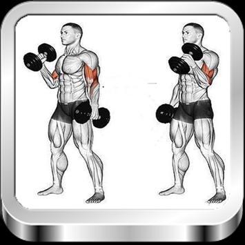 Dumbbell Exercise apk screenshot
