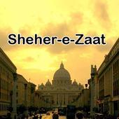 Sheher e Zaat urdu novel Umera icon