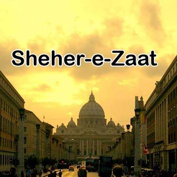Sheher e Zaat urdu novel Umera poster