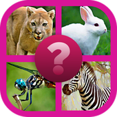 Guess The Animals Quiz icon