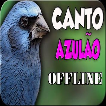 CANTO DO PÁSSARO AZULÃO poster