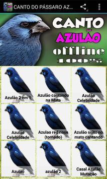 CANTO DO PÁSSARO AZULÃO screenshot 1