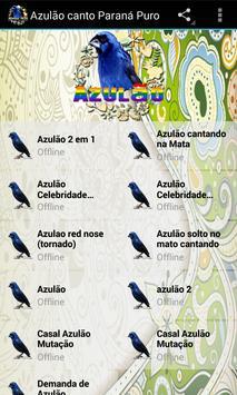 Azulão canto Paraná Puro apk screenshot
