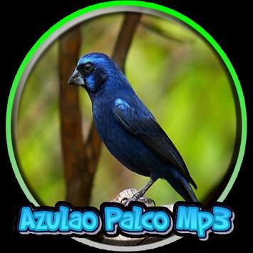Azulao Palco Mp3 poster