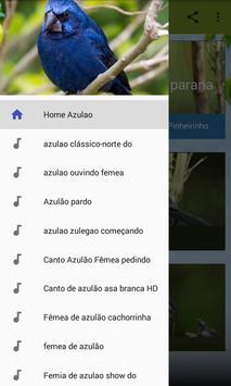 Azulão Canto Fibra screenshot 1