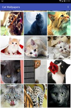 Cat Wallpapers captura de pantalla 2