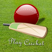 Play Cricket icon