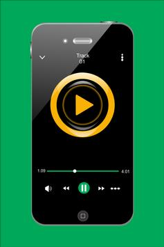 Shontelle All Songs apk screenshot