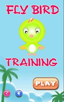 Fly Bird Training poster