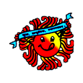 PCDFICDS icon