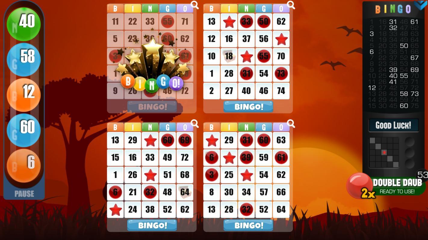 Bingo Online Spielen Echtgeld