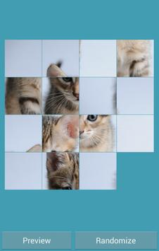Cat game puzzle poster