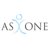 AS ONE AUDIT icon