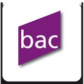 Boyer Audit icon