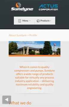 Sundyne screenshot 2