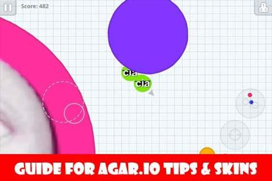 Guide for Agar.io Tips & Skins poster