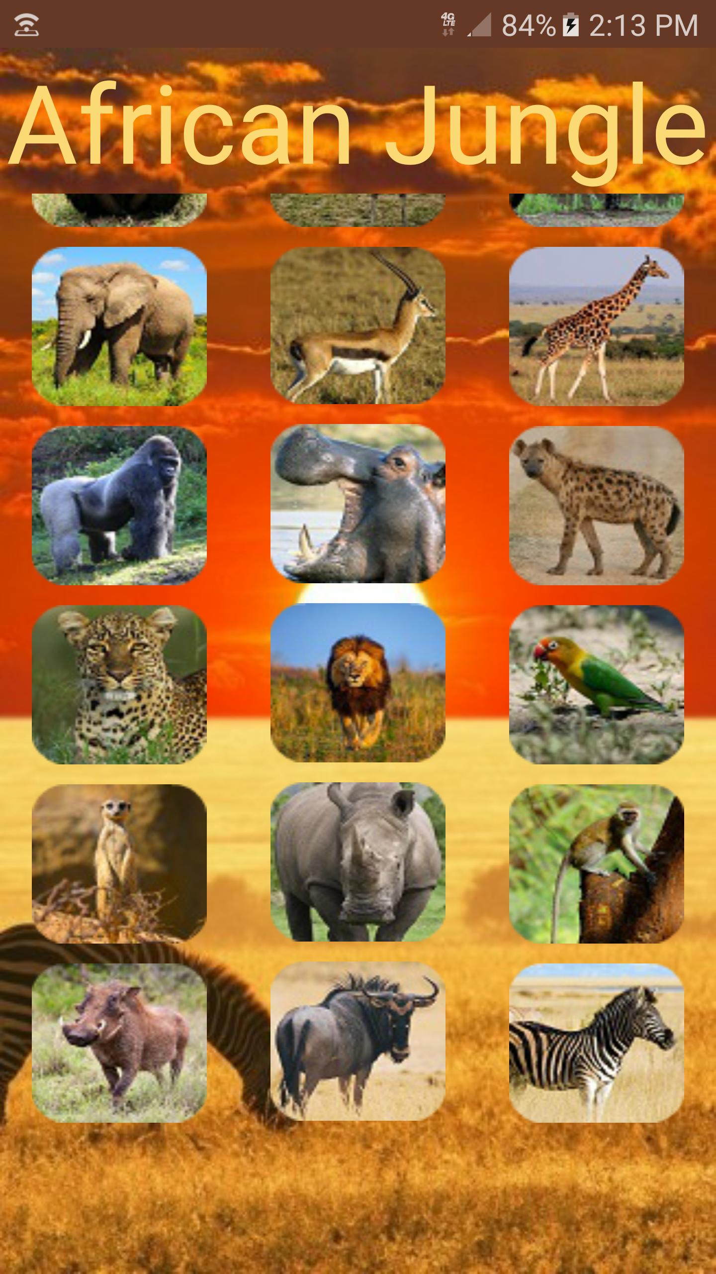 Animal Sounds: African Jungle for Android - APK Download