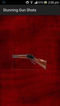 Stunning Gun Shots poster