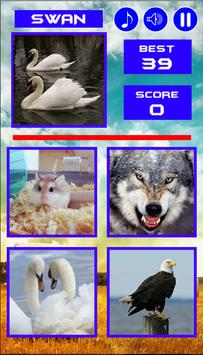 Animal Quiz apk screenshot