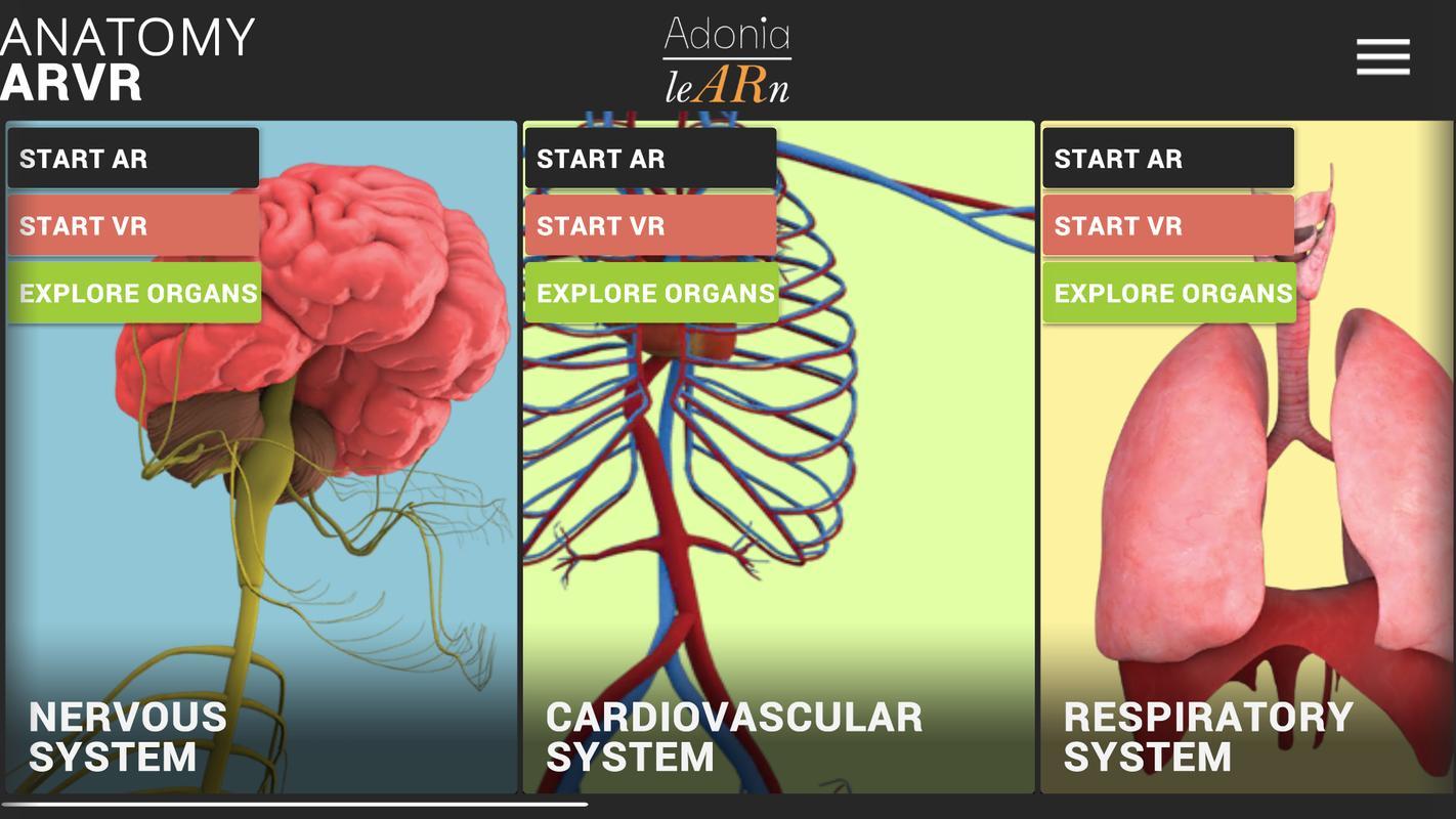 Anatomy ARVR APK Download - Free Education APP for Android | APKPure.com
