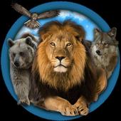 Wild Life Gallery icon