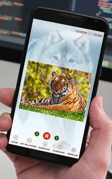 Wild Life Gallery apk screenshot