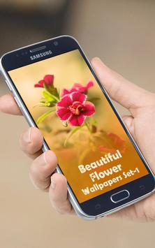 Beautiful Flowers Wallpapers poster