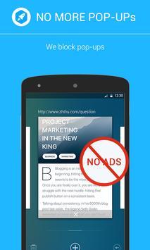 Adskip Browser poster