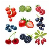 Misti Ffruit Candy icon