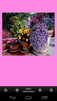 Flower Garden Plants Ideas apk screenshot