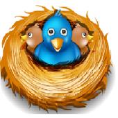 flappy yellow bird icon