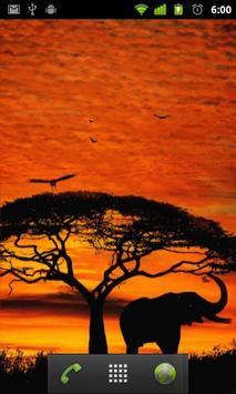 african sunset live wallpaper apk screenshot