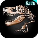The Lost Lands:DH Lite APK