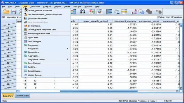 Manual SPSS learn 21 apk screenshot