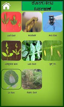 Pegionpea Kannada screenshot 2