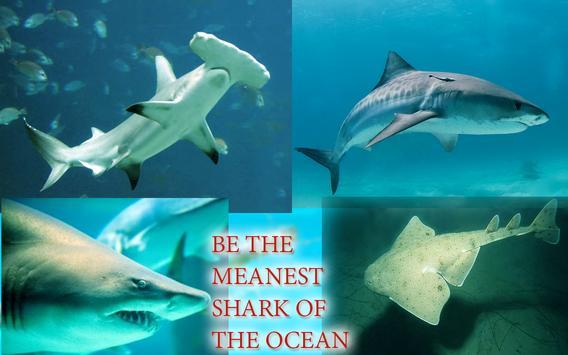 Hungry Shark Attack Sea World apk screenshot