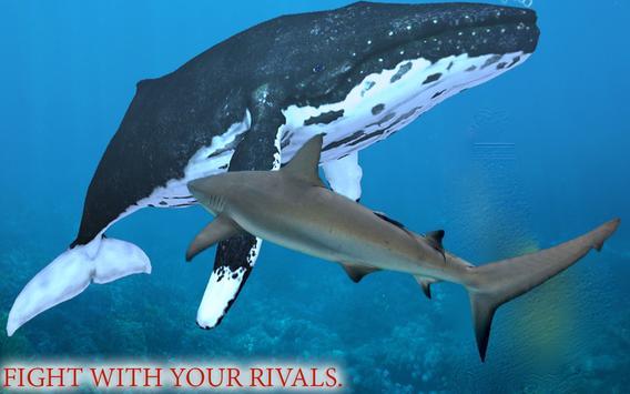 Hungry Shark Attack Sea World poster