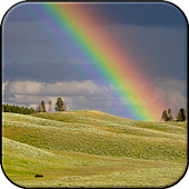 Rainbow Wallpapers HD (backgrounds & themes, 2017) icon