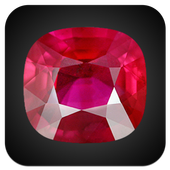 Chinese-English Gem Dictionary icon