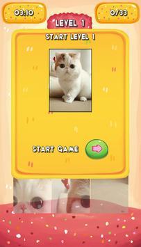 Lovely Cat Jigsaw Puzzle screenshot 5