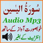 Surah Yaseen Full Audio Mp3 icon