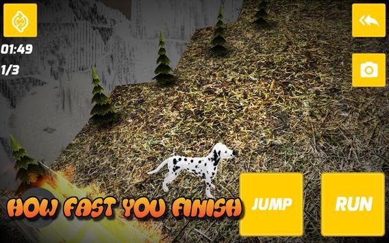 Dalmatian 3D Simulator poster