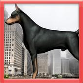 Doberman Dog icon