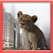 Attak on Lion icon